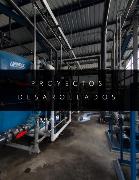 proyectos desarrollados